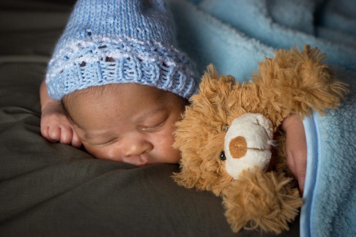 bearsleep