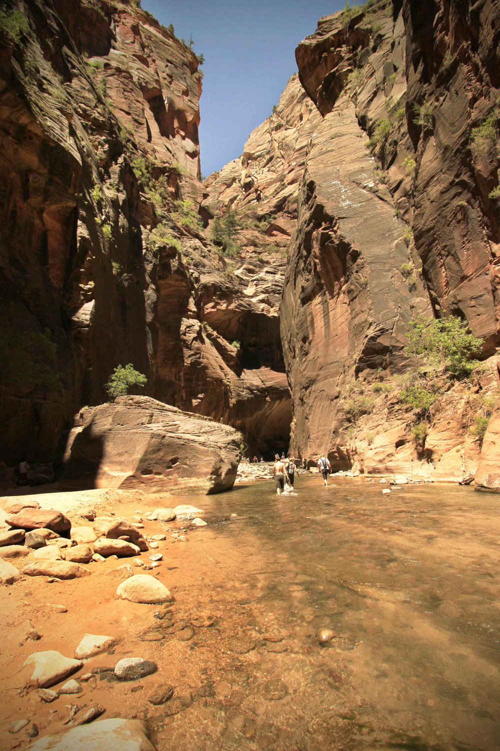 narrows6