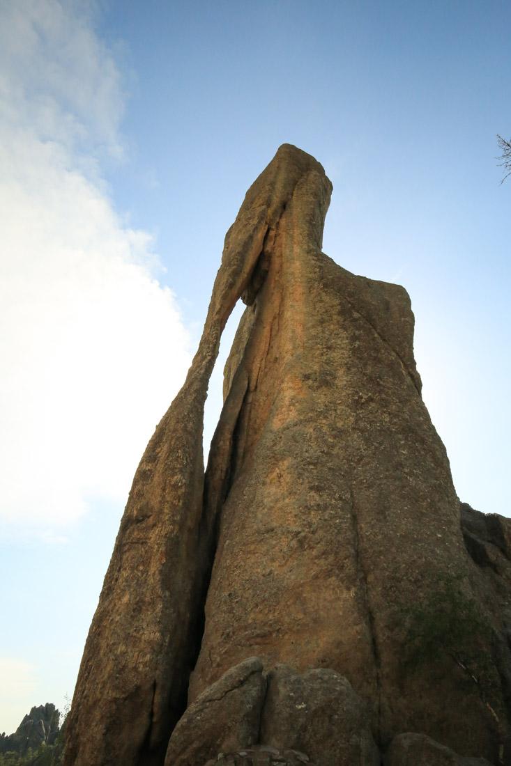 Mount Rushmore100